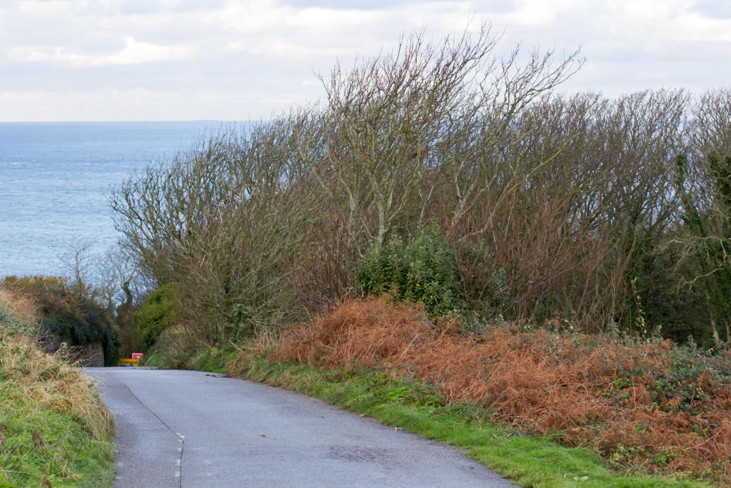 An Alderney Road