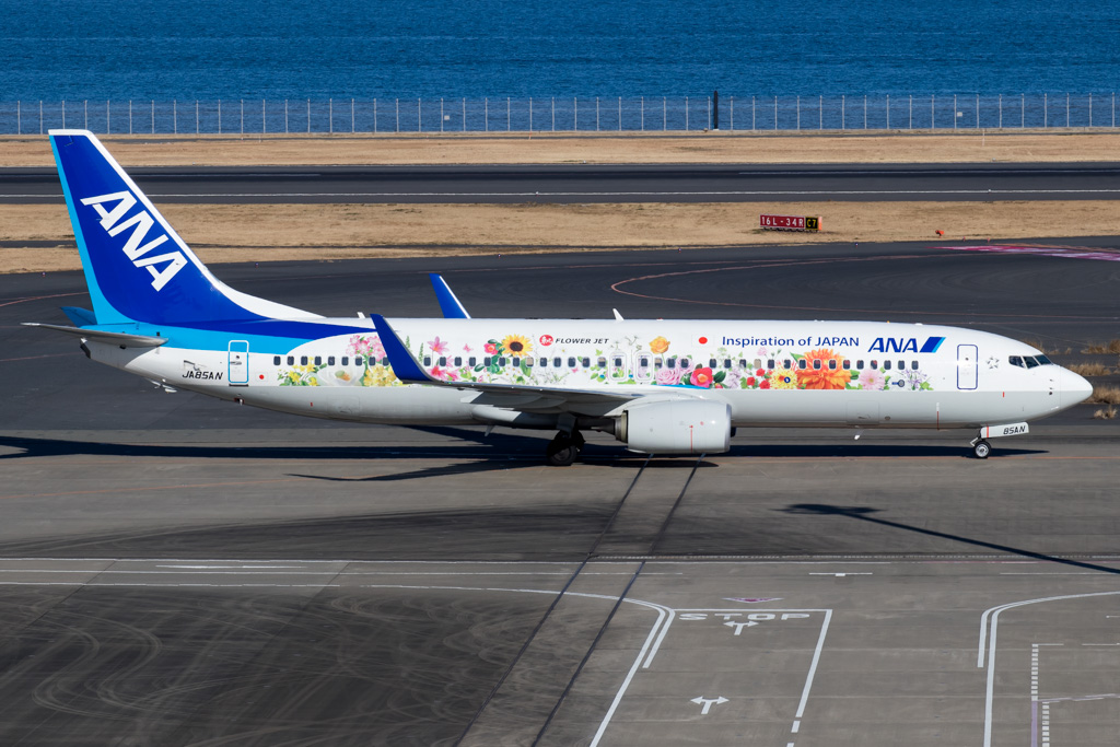 All Nippon Airways Boeing 737-800 Flower Jet