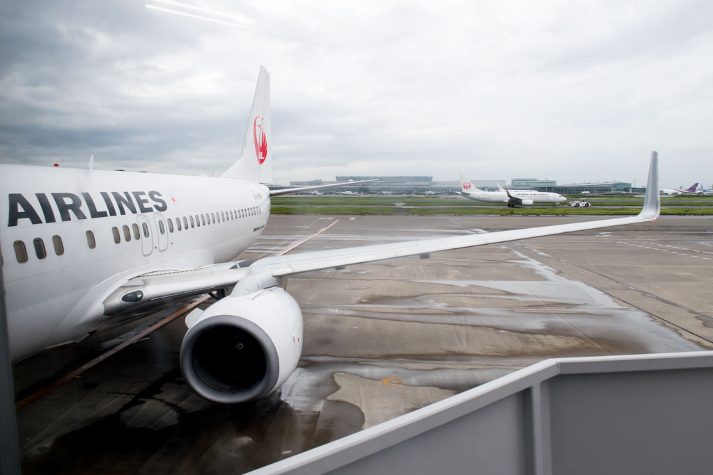 Japan Airlines 737-800