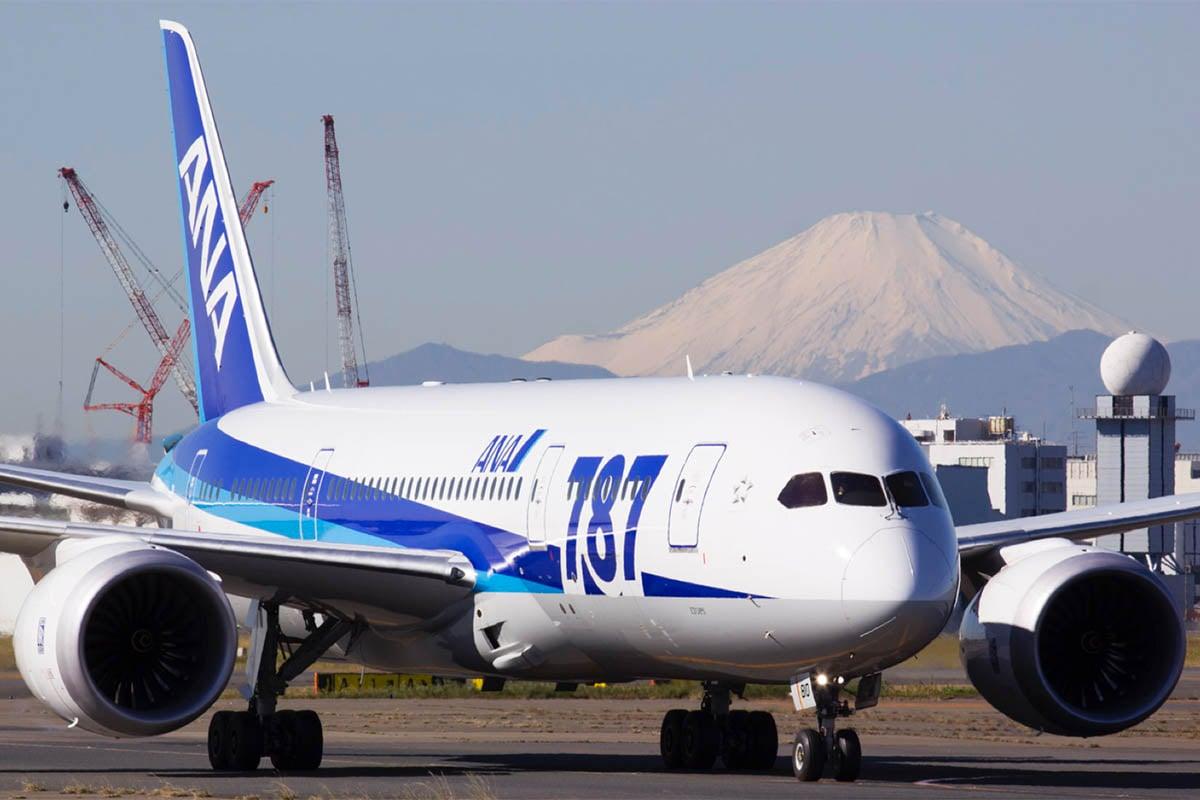 ANA 787 Livery
