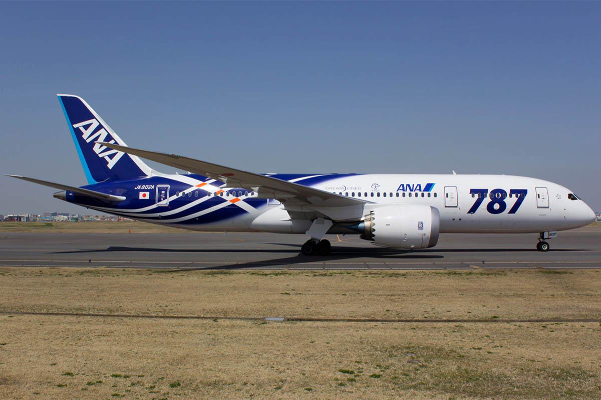 ANA Mackerel 787
