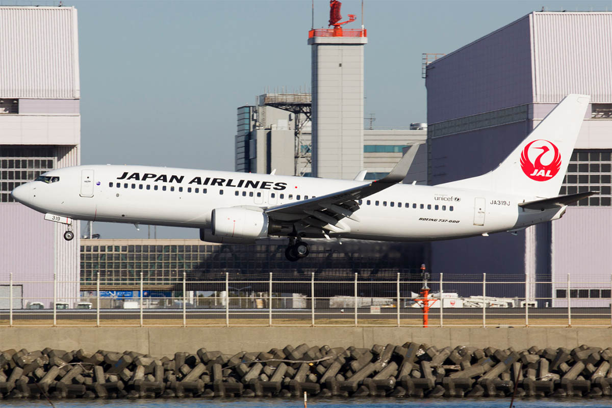 Japan Airlines 737