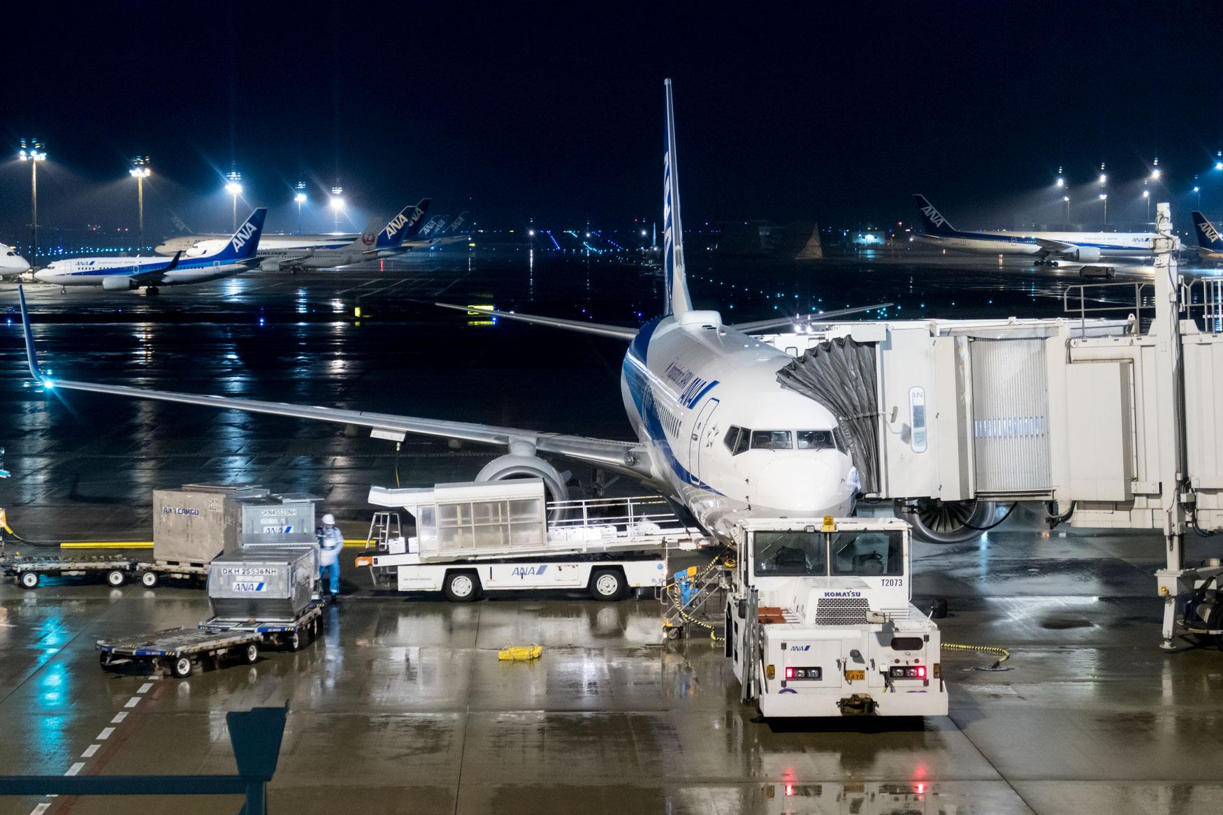ANA All Nippon Airways Boeing 737-800