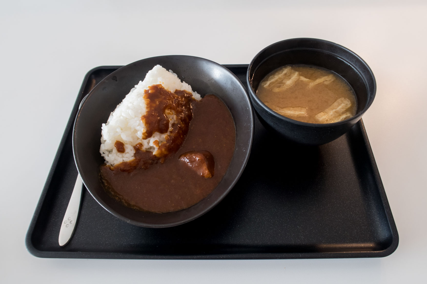 JAL Beef Curry