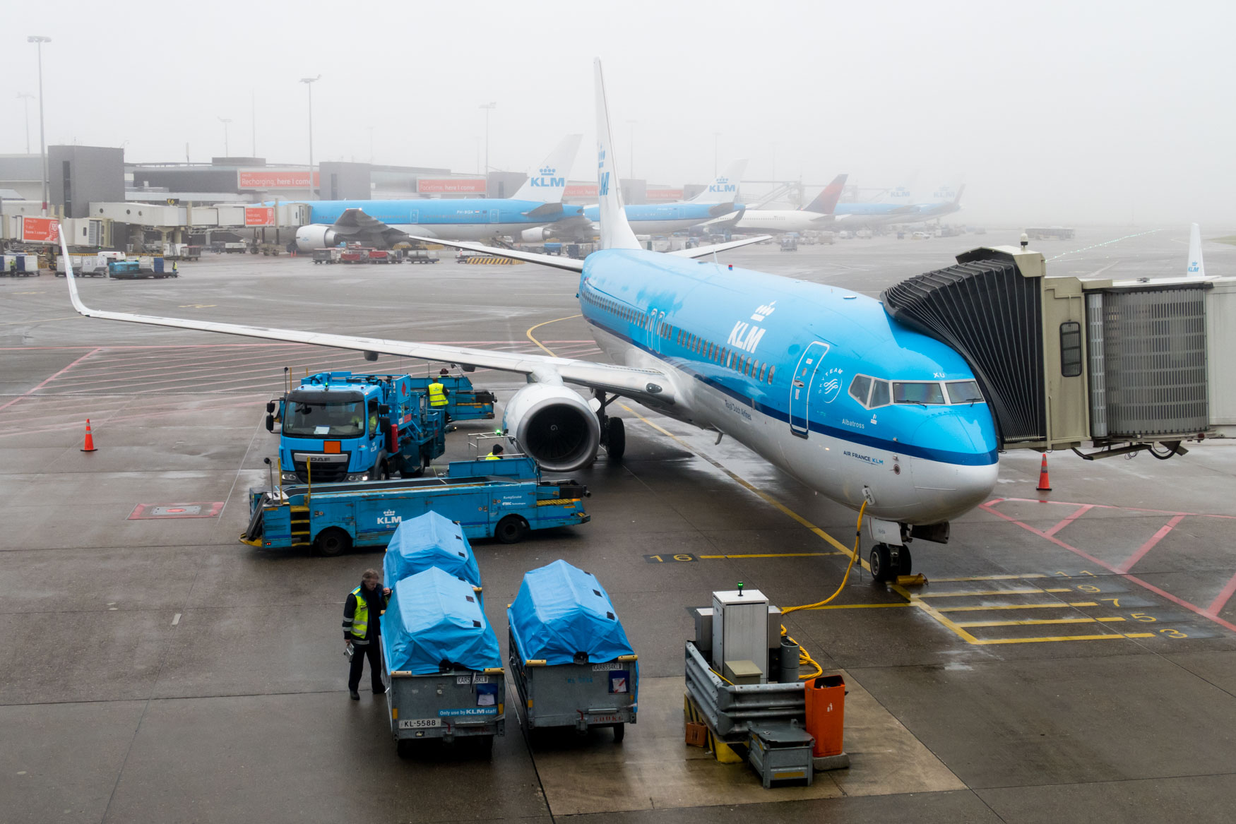 KLM Boeing 737-800 at Amsterdam Schiphol