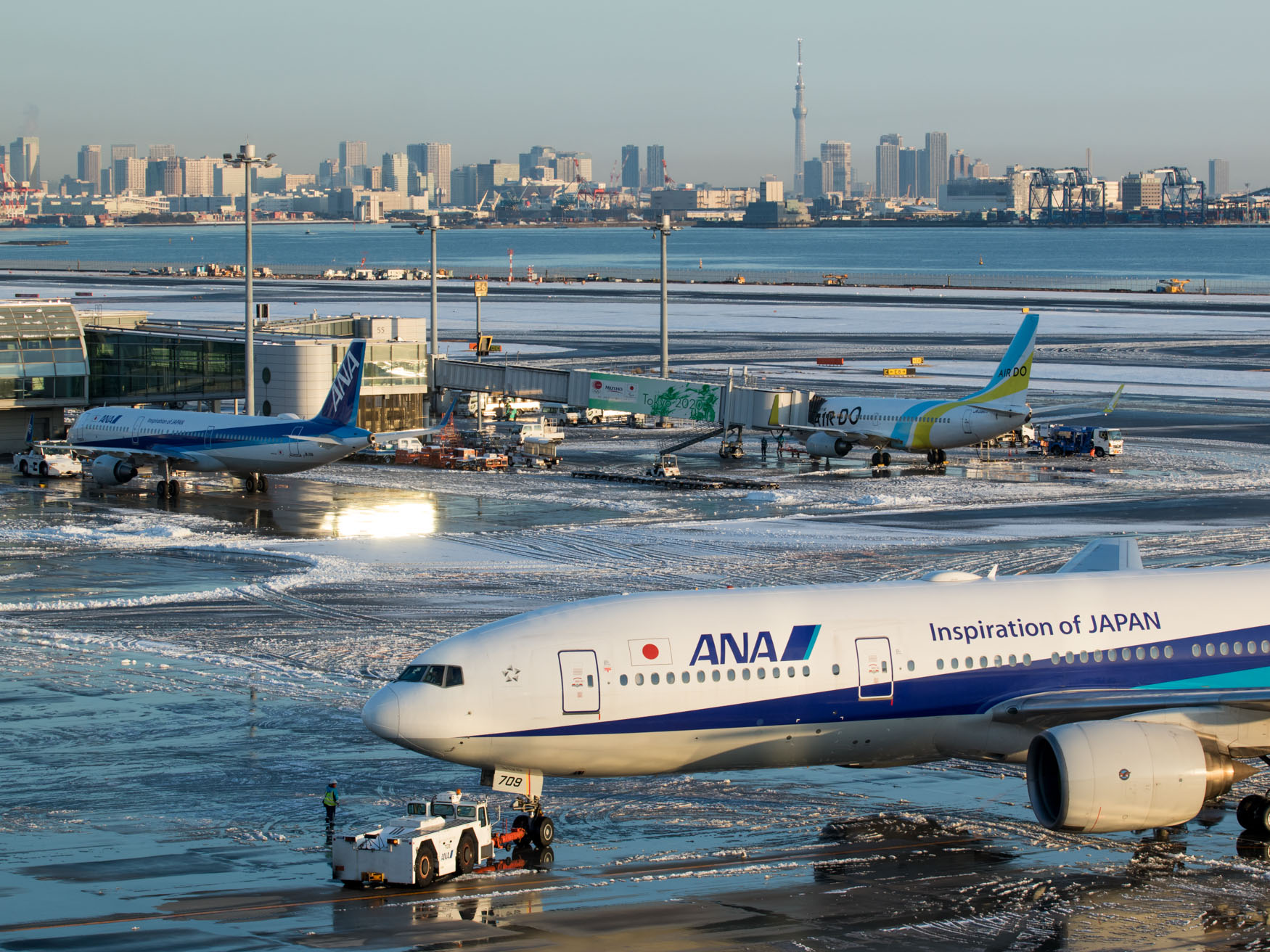 ANA 777-200 Pushing Back in Front of Sky Tree