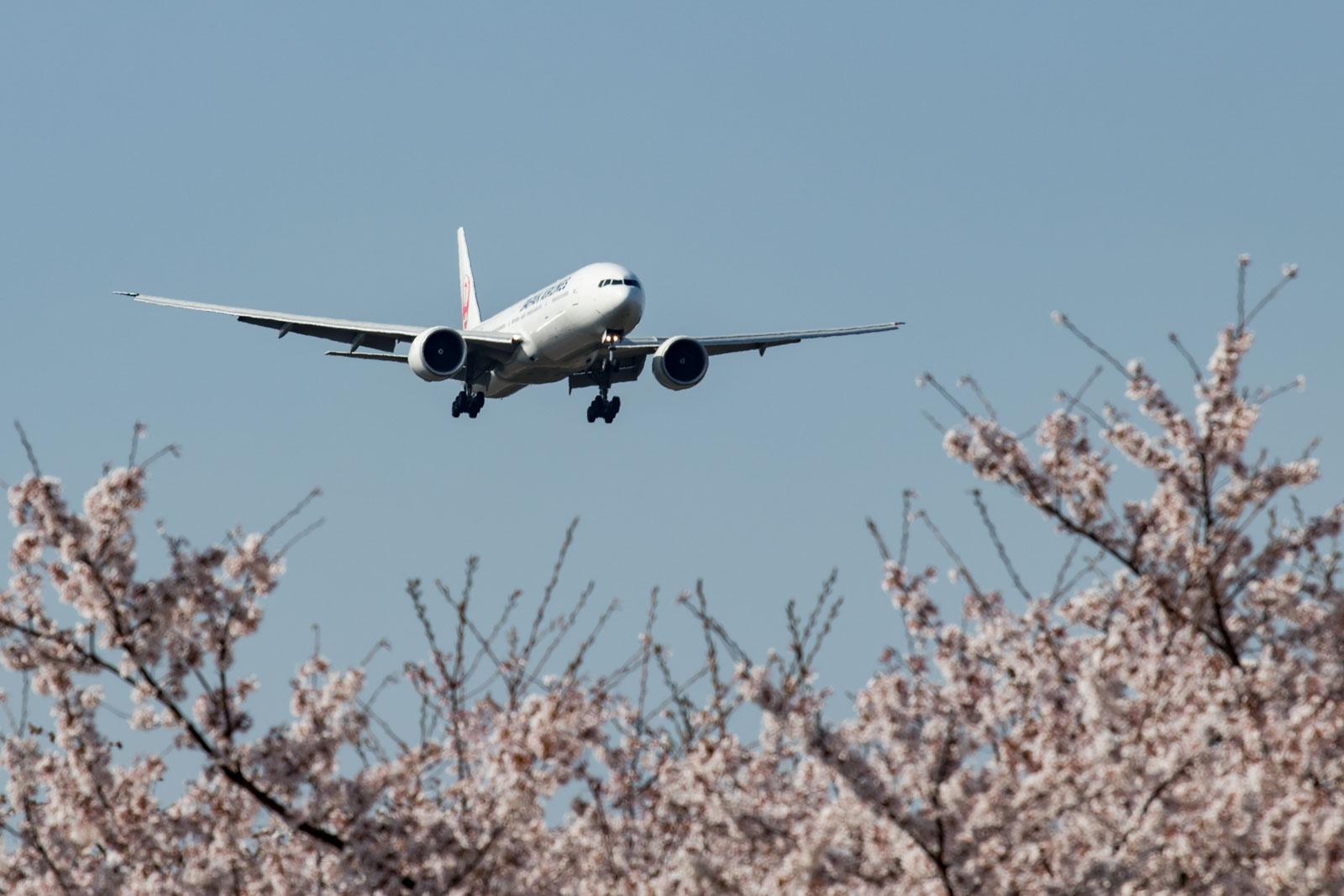 JAL 777-300ER