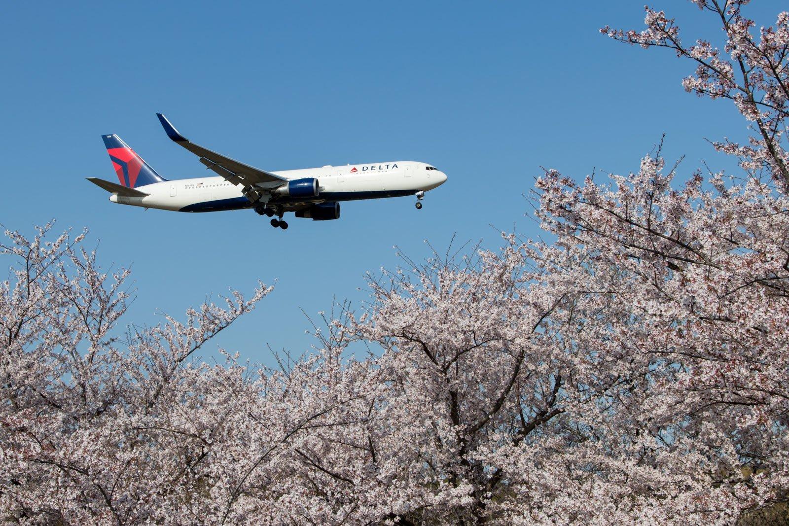 Delta Air Lines Boeing 767-300ER Narita