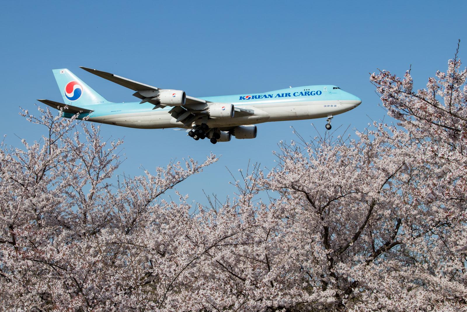 Korean Air Cargo 747-8F Tokyo Narita