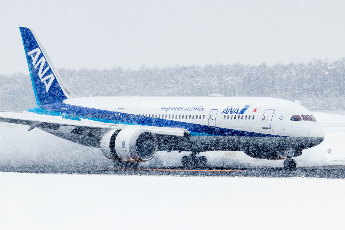 ANA 787 Landing in Snow