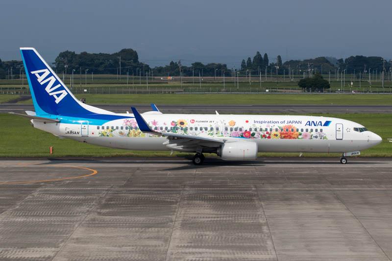 ANA 737-800 Flower Jet at Kagoshima Airport