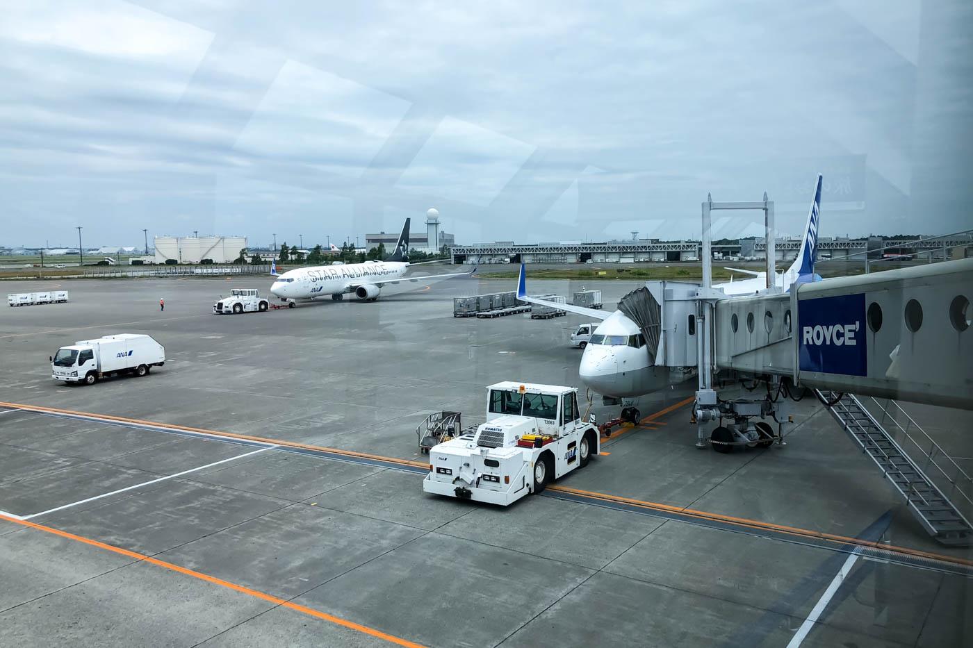 ANA 737-800 at Sapporo New Chitose