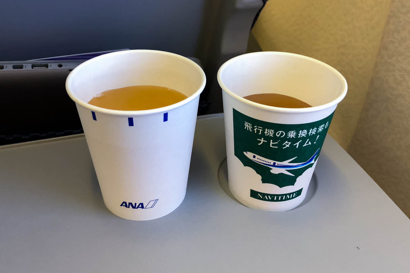 ANA In-Flight Service on Domestic Flights