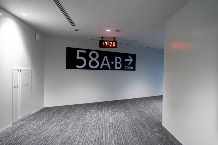 Tokyo Narita Airport Gate 58A