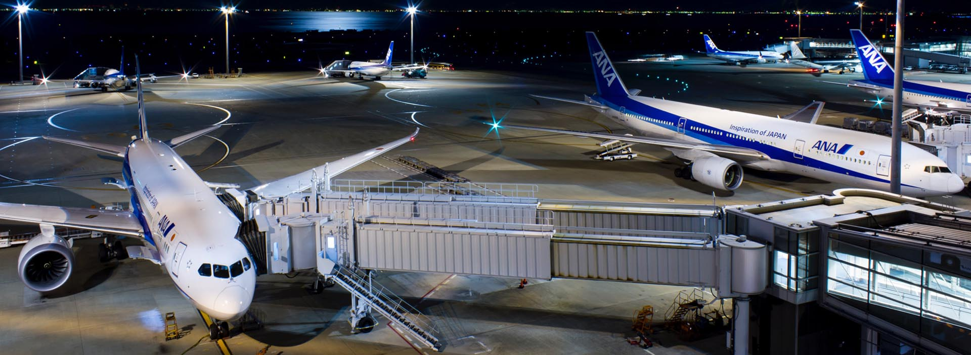 Red-Eye Flights: Advantages, Disadvantages, and Tips to Cope